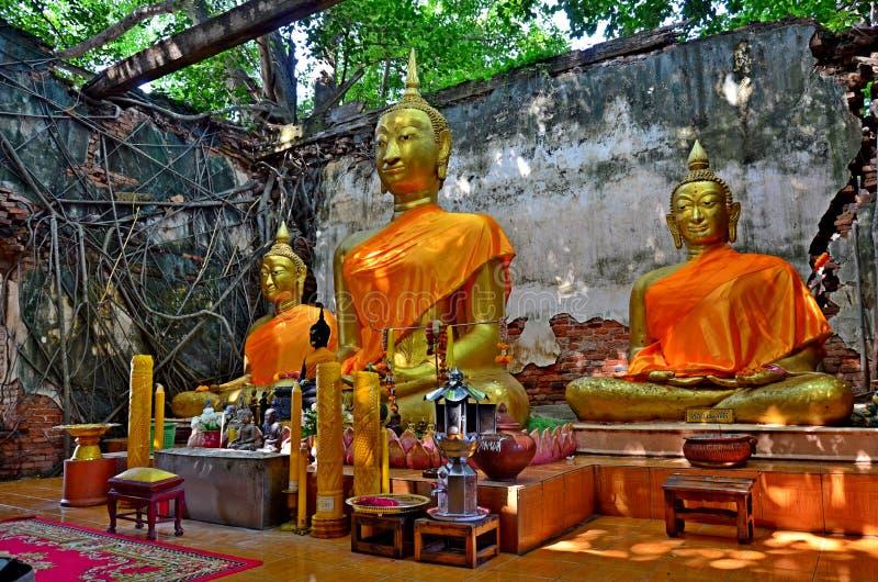 Statua di Buddha in Tailandia Ang Thong immagine stock