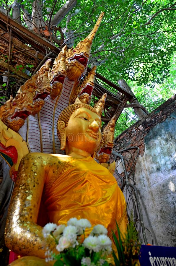 Statua di Buddha in Tailandia Ang Thong immagini stock