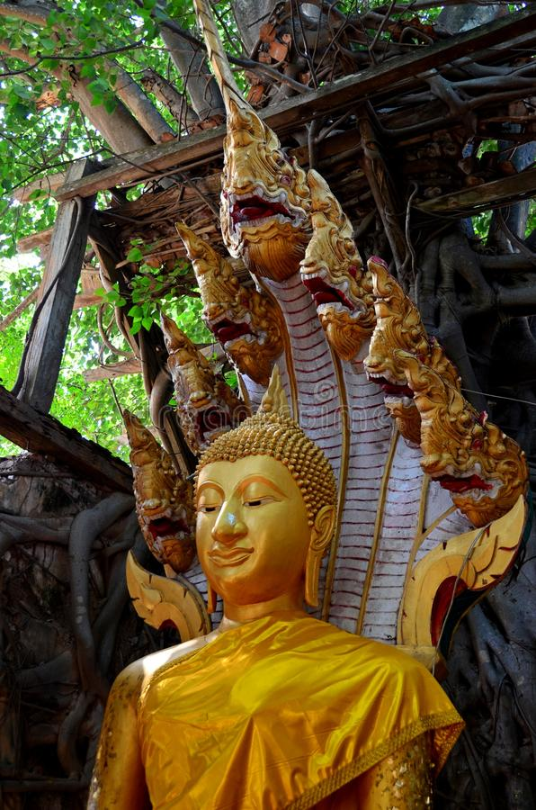 Statua di Buddha in Tailandia Ang Thong immagini stock libere da diritti