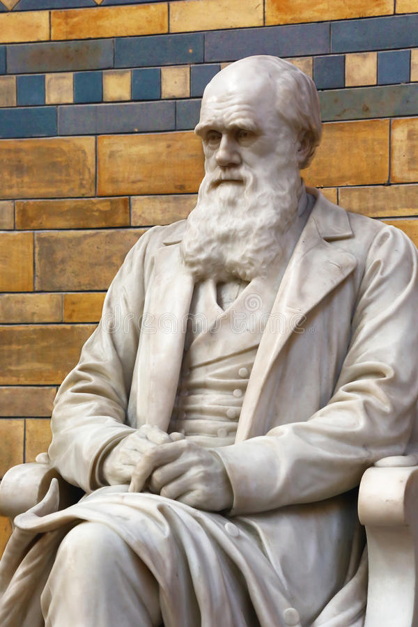 Statua di Charles Darwin fotografia stock