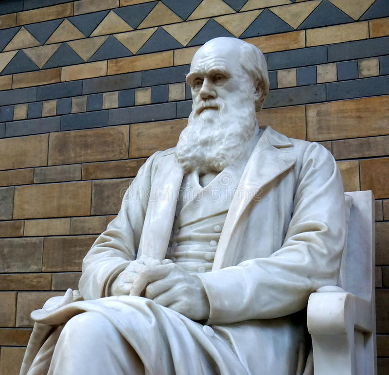 Statua di Charles Darwin fotografia stock libera da diritti