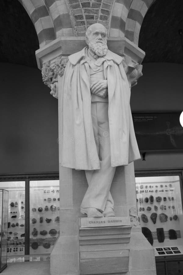 Statua di Charles Darwin all'università di Oxford fotografia stock libera da diritti