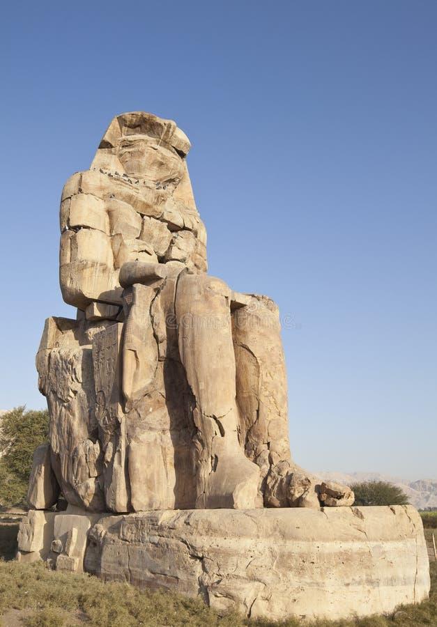 Statua di Memmnon Egitto fotografia stock libera da diritti