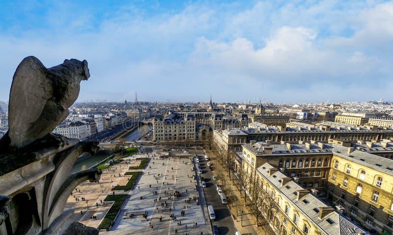 Statua di pietra famosa del doccione in Notre Dame Cathedral With City Of Parigi fotografia stock libera da diritti