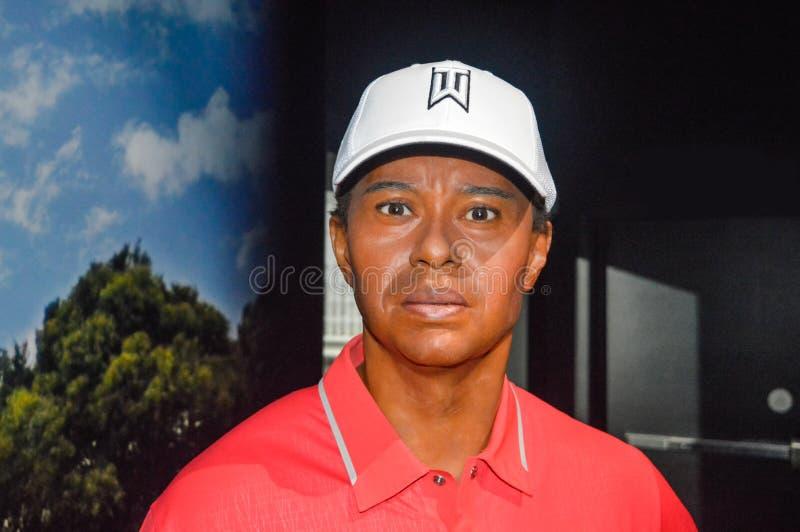 Statua di Tiger Woods al museo di Grévin in Montréal fotografia stock libera da diritti