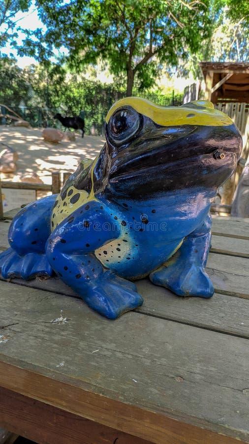 Statua di una rana a colori immagini stock libere da diritti