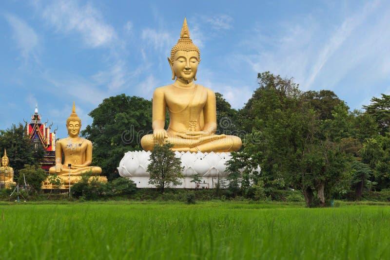 Statua dorata di Budha fotografia stock