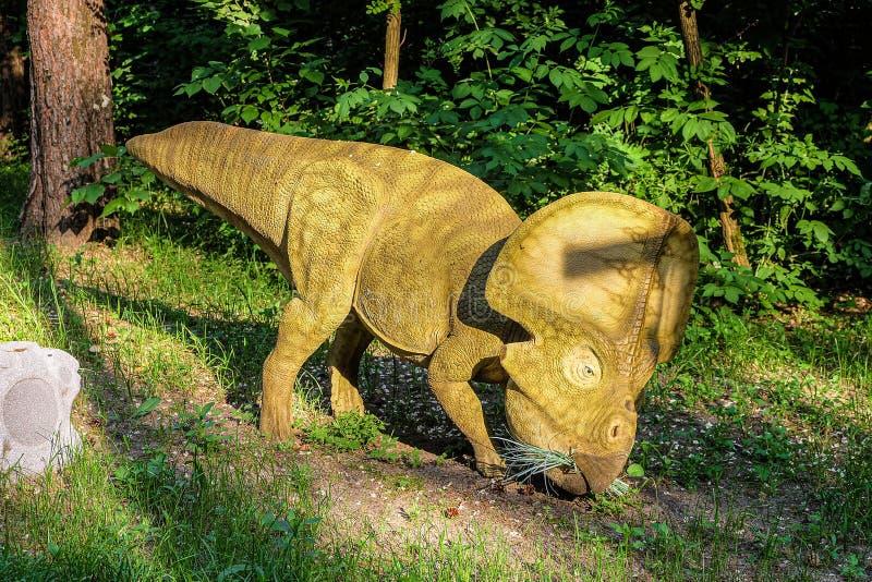 Statua a grandezza naturale dei protoceratopi nella foresta di Belgorod dinopark Herbivore dinosaur immagine stock