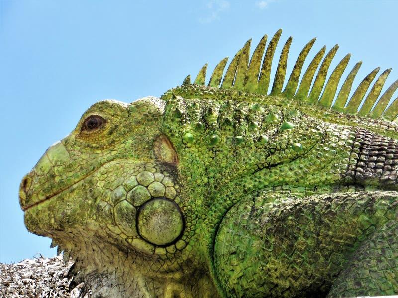 Statua iguana, Tampa, Floryda zdjęcie stock