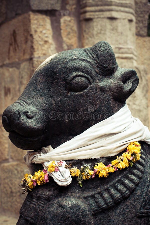 Statua Nandi byk przy Hinduską świątynią zdjęcie royalty free