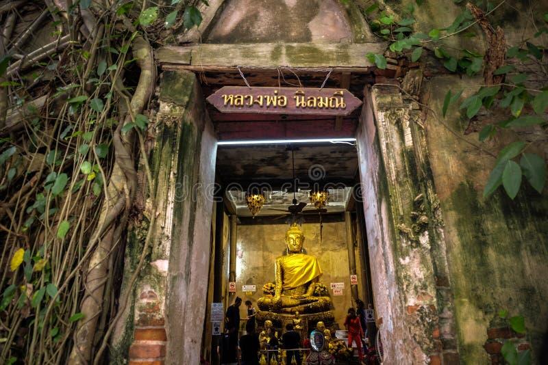 Statua nel vecchio tempio, tempio di Buddha coperto di radici dell'albero di banyan con l'insegna di Luang Por Nilmanee nell'entr fotografie stock libere da diritti