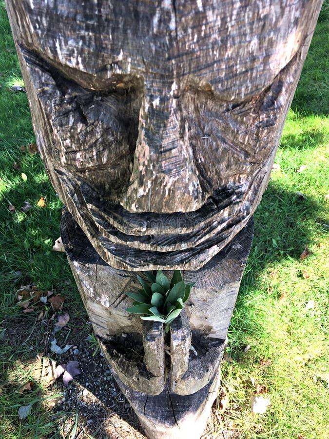 Statua pregante di legno rustica di Roughcut fotografia stock
