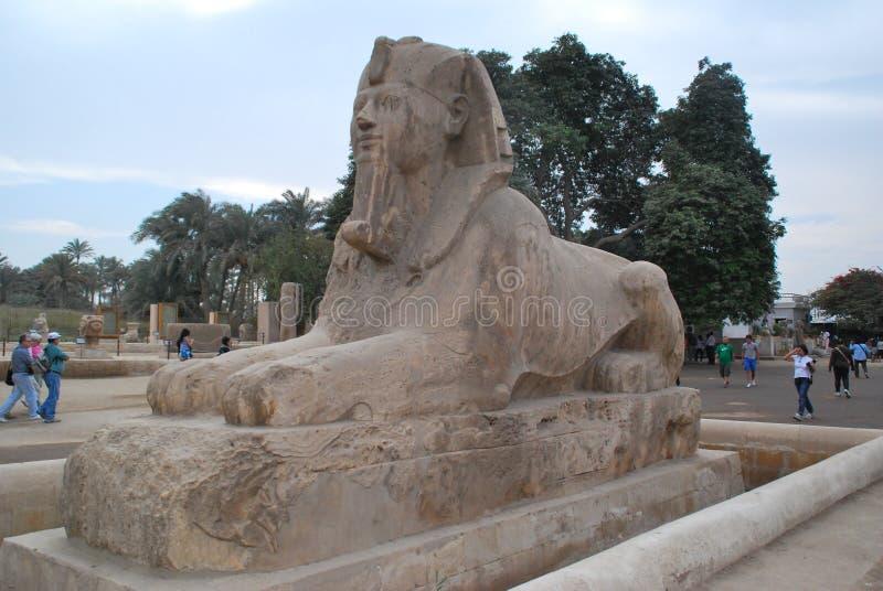 Statua Ramses II obrazy stock