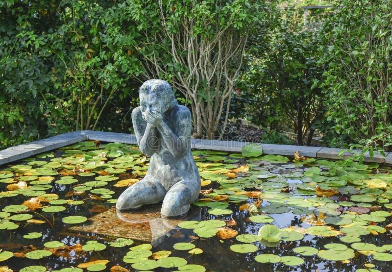 Statua roześmiana kobieta otaczająca wodnymi lelujami fotografia stock