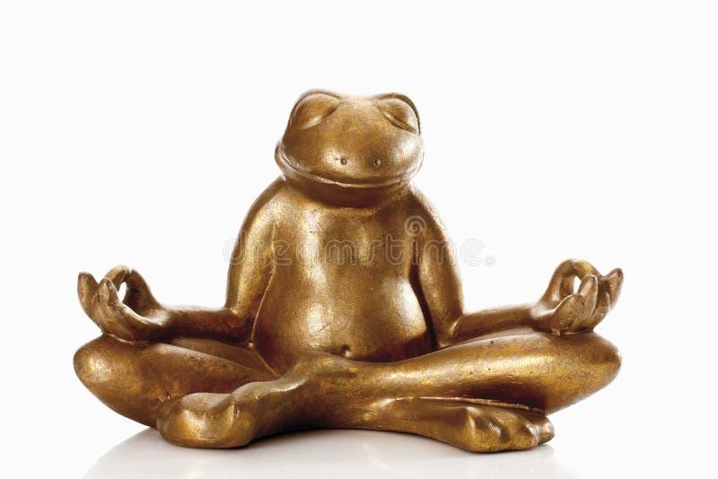 Statua złota żaba przeciw białemu tłu zdjęcie royalty free