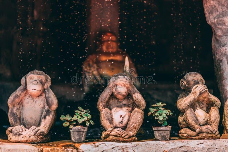 Statue à la montagne d'or à Bangkok 3 singes dans le premier plan avec la pose célèbre image stock