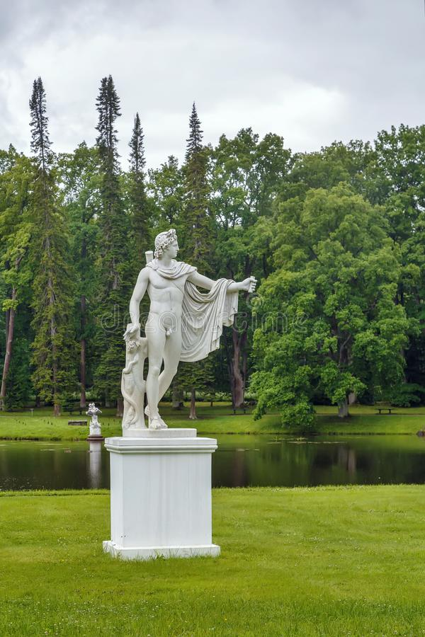 Statue of Apollo Belvedere, Oranienbaum, Russia royalty free stock photography
