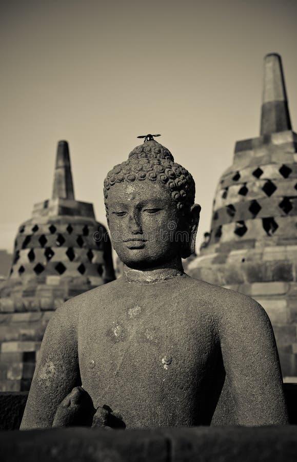 Statue de Bouddha au temple de Borobudur, Java, Indonésie images libres de droits