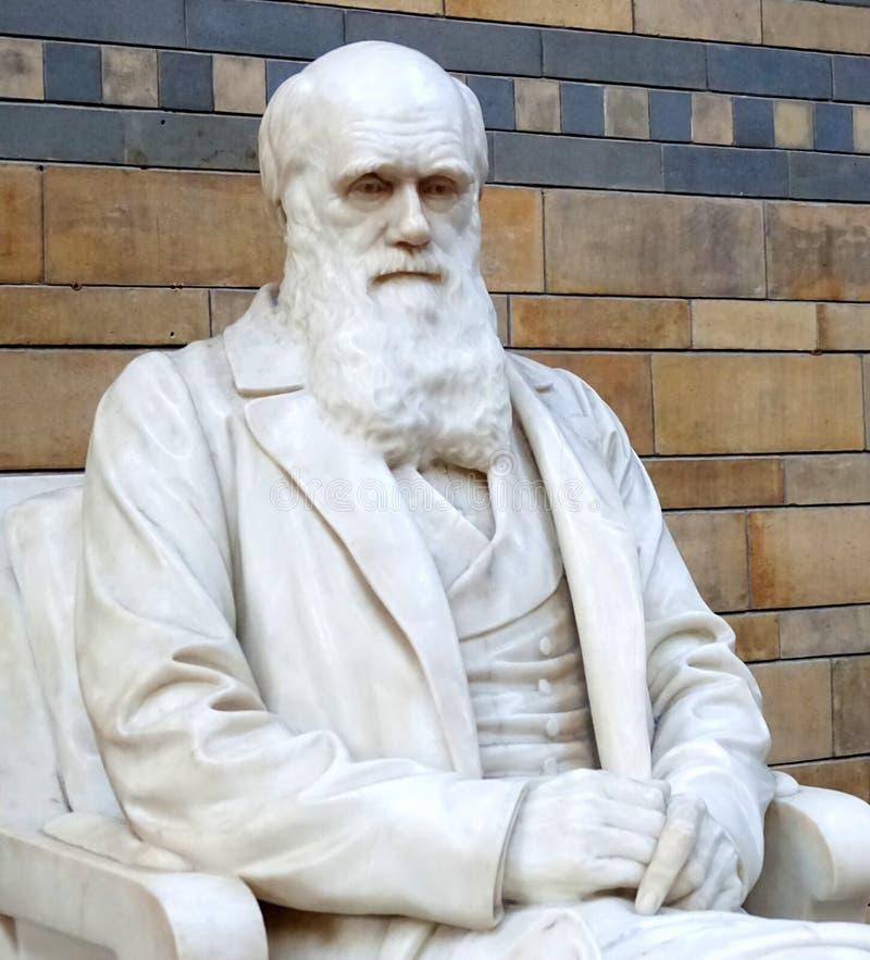 Statue de Charles Darwin photo libre de droits