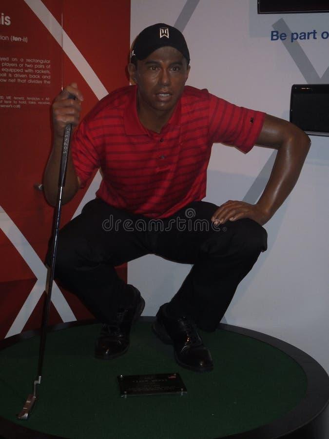 Statue de cire de Tiger Woods photographie stock libre de droits