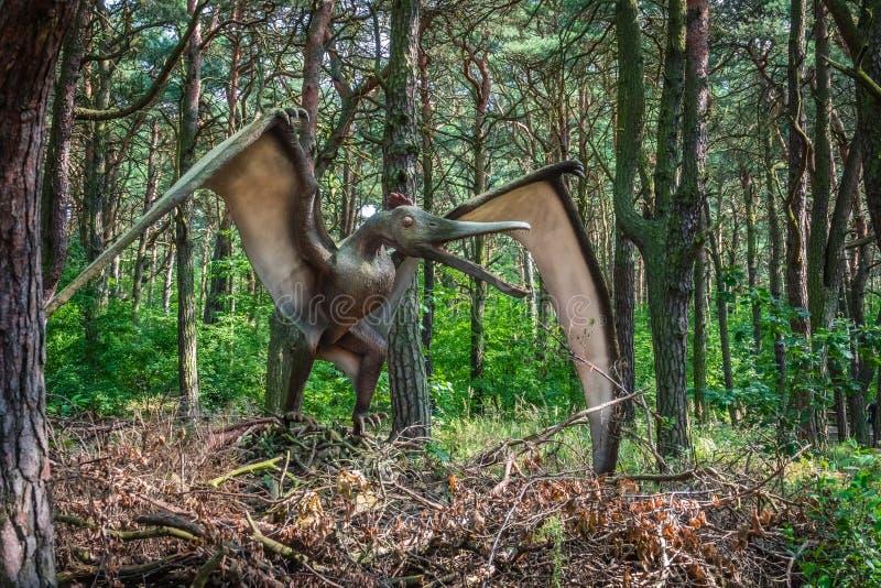 Statue de dinosaure de ptérodactyle photos libres de droits