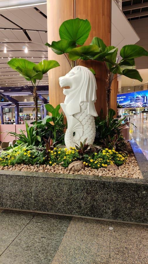 Statue de Merlion à l'aéroport international de changi, Singapour images stock