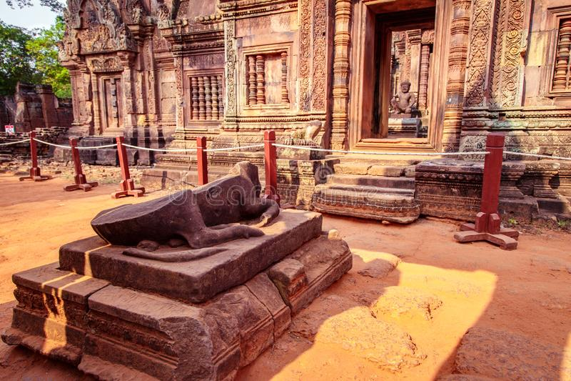 Statue de vache à l'entrée du temple de Banteay Srei, Siem Reap, Cambodge images libres de droits
