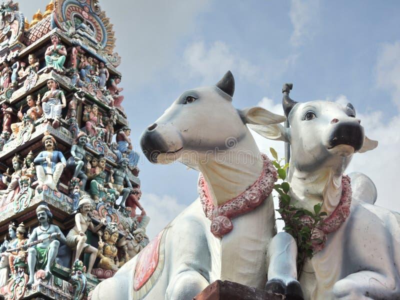 Statue delle mucche sante a Singapore con la torre religiosa ornamentale decorata immagini stock libere da diritti