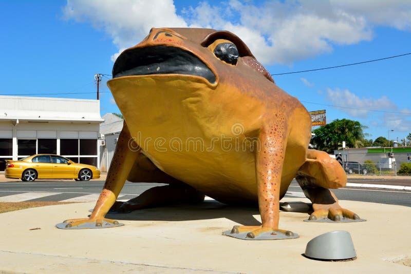 Statue des großen Cane Toad Rhinella-Jachthafens in Sarina, QLD stockbilder