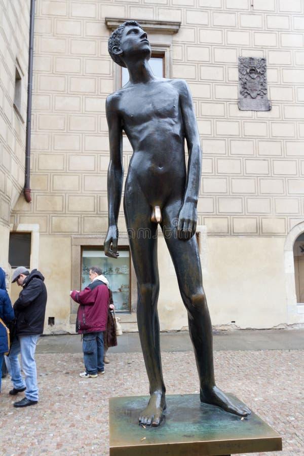 Der Penis des Jungen