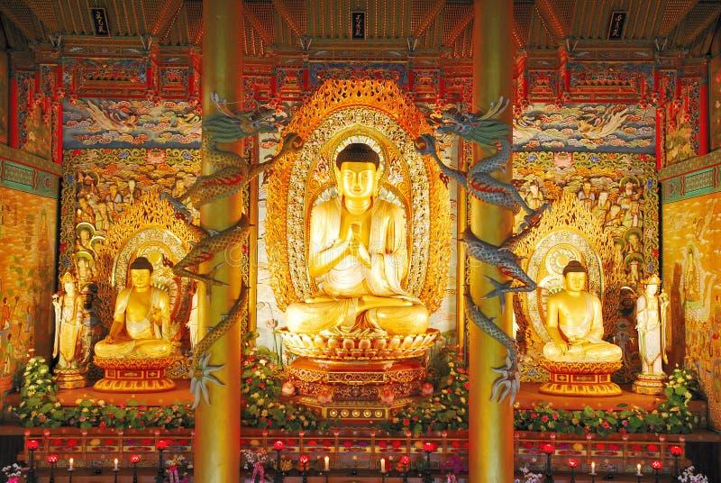 Statue dorate maestose del Buddha fotografia stock libera da diritti
