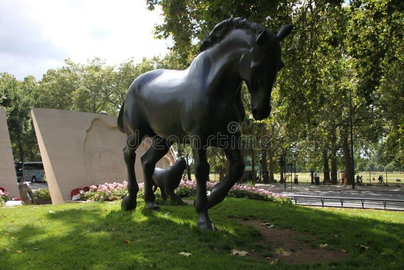 Statue eines stalion in London stockbilder