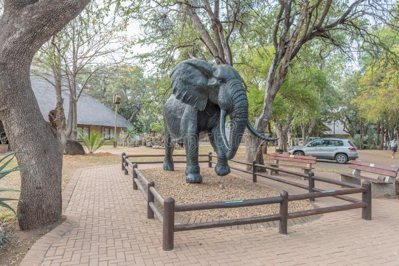 Statue grandeur nature d'éléphant au camp de repos de Letaba photo libre de droits