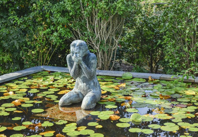 A statue of a laughing woman surrounded by water lilies stock photography