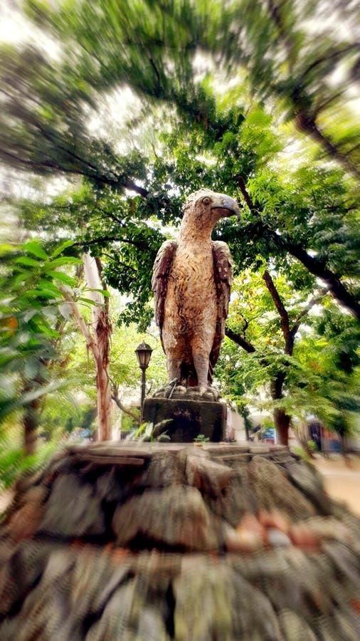 Statue of the Philippine Eagle! Location: Liwasan Bonifacio, Manila Philippines. Trees, rock, zoom, blur royalty free stock images