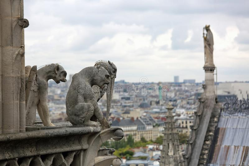 Statue on th Notre Dame in Paris cathedral while observing the c. Statue on the roof of the cathedral of Notre Dame in Paris France while observing the city from stock images
