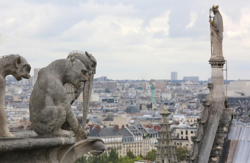 Statue on the roof of the cathedral of Notre Dame in Paris while. Statue on the roof of the cathedral of Notre Dame in Paris France while observing the city from royalty free stock photo