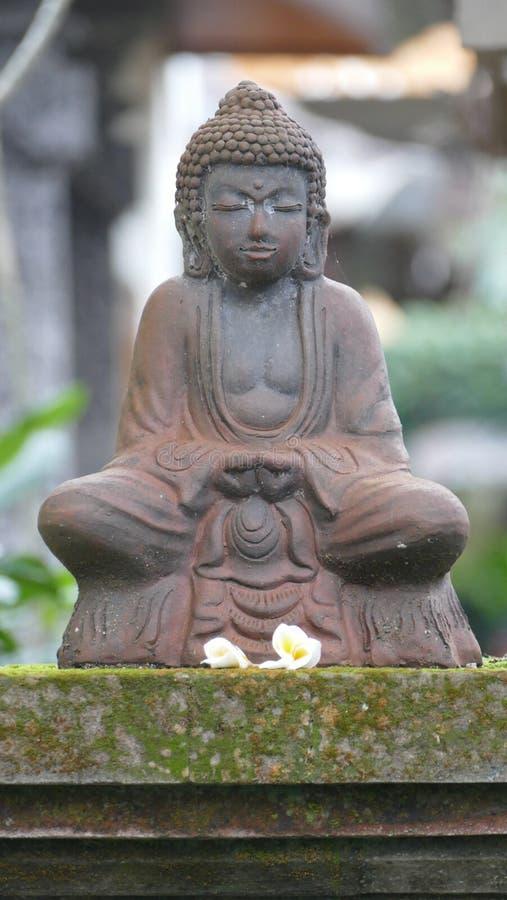 Peaceful and serene buddha statue stock photography