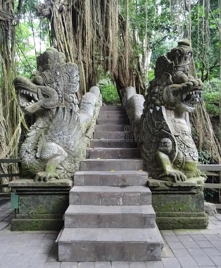 Famous stairway at Monkey Forest royalty free stock image