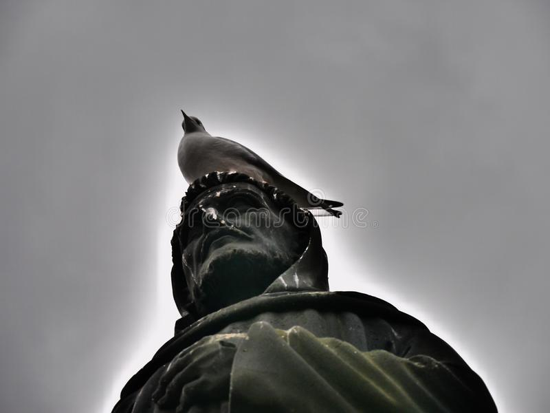 Statue vs. Pigeon. Prague Pigeon dealing with the historical monuments royalty free stock photography