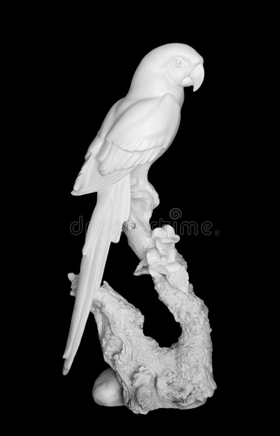 Statue of white parrot isolated on black background stock image