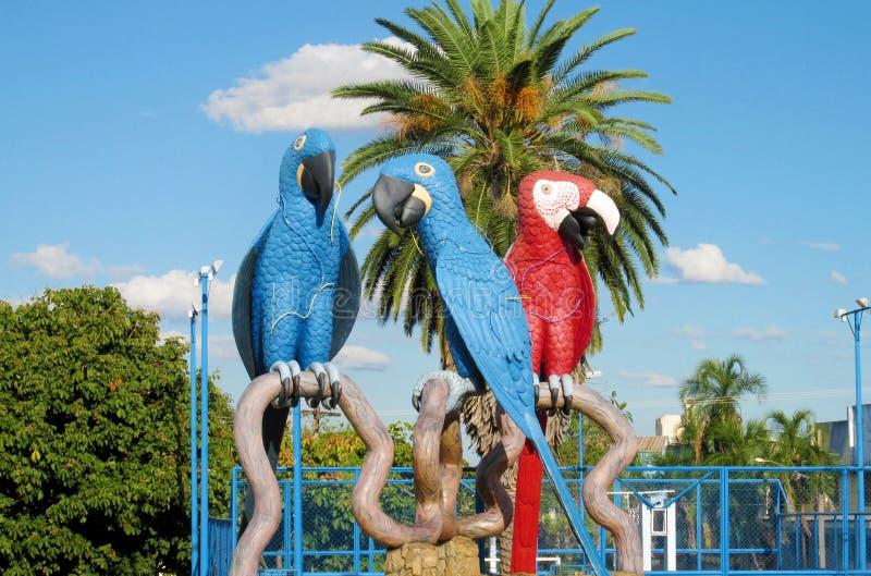 Statues colorées des perroquets bleus et rouges dans Campo grand, Brésil photos libres de droits