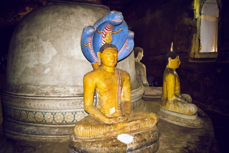 Statues de Bouddha dans le temple de Dambulla Sri Lanka photo libre de droits