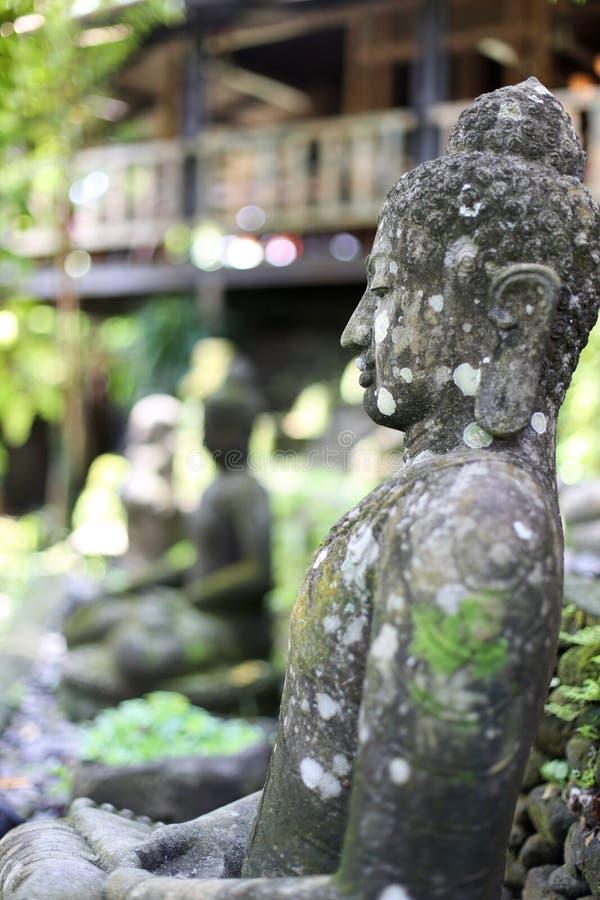 Statues de Bouddha de pierre dans le découpage fait main de jardin de maison dans le style de Bali images stock