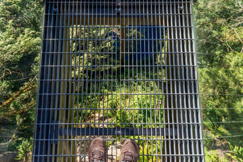 Status op de Capilano-Hangbrug stock fotografie