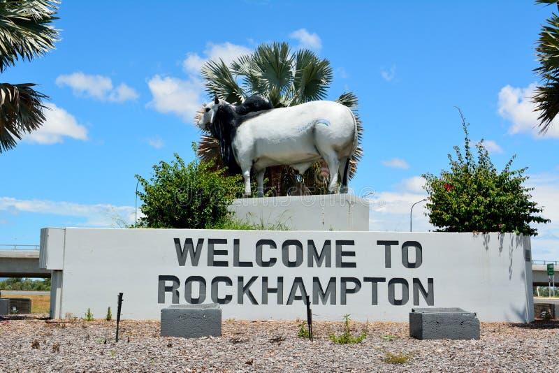 Staty av brahmantjuren i Rockhampton, Queensland, Australien royaltyfri foto