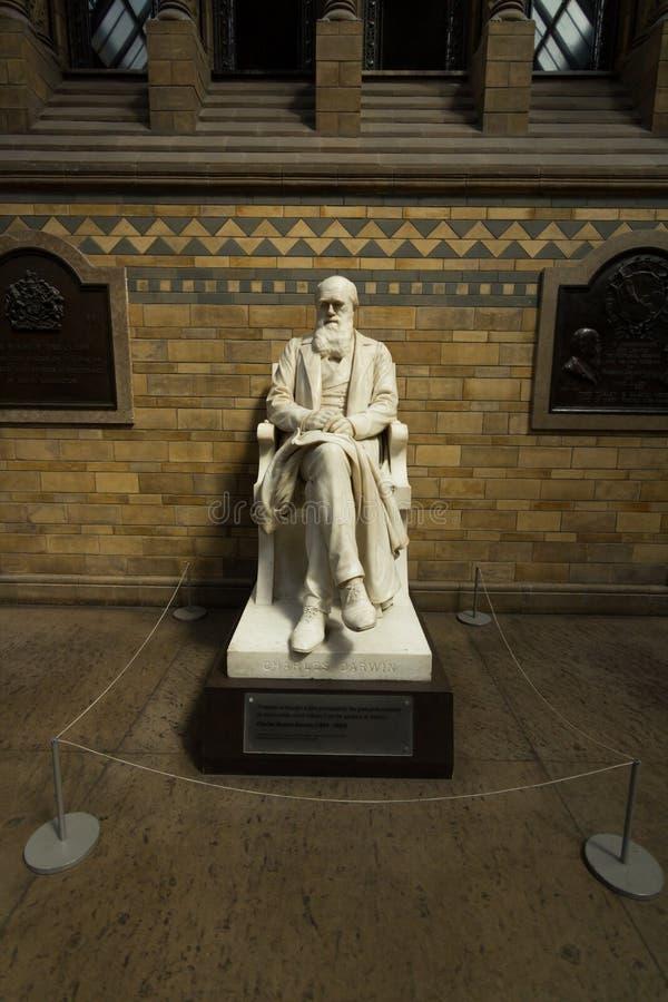 Staty av Charles Darwin i vetenskapsmuseet royaltyfria foton