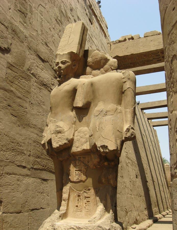 Staty av de gudAmun rommarna, Luxor royaltyfri foto