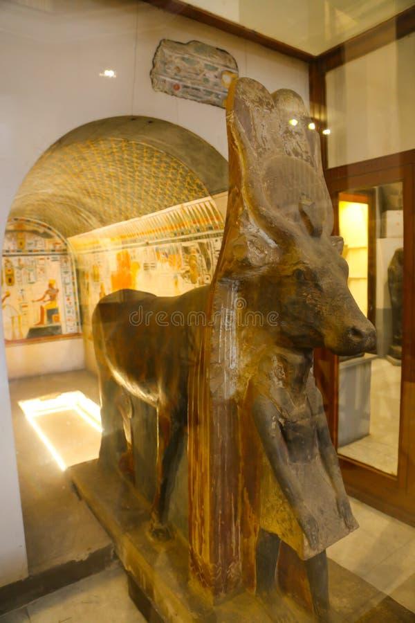 Staty av guden Anubis av den spända Ankh Amonskatten - egyptiskt museum royaltyfri fotografi