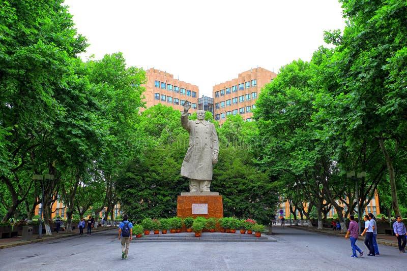 Staty av Mao Zedong på tongjiuniversitetsområdet shanghai, porslin royaltyfria foton